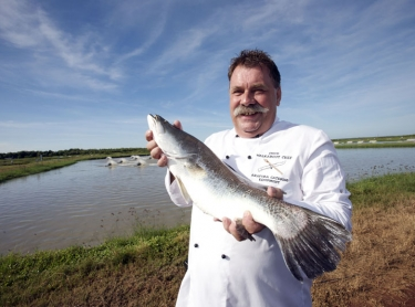 Steve Sunk with a barramundi at the Humpty Doo barramundi farm, outside Darwin, NT. fish marine aquatic life recreation