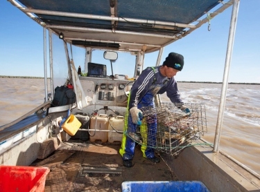 Mud crabbers fish for mud crabs at the mouth of the Roper River, in the Gulf of Carpentaria - Vu Van Nguyen checks his pots in the sea outside the mouth of the Roper River