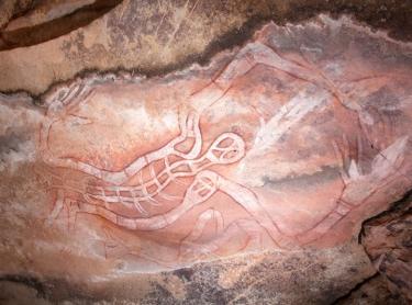 Warddeken IPA - Arnhem Land - survey of rock art in the Kunbambuk estate - Samuel Namundja, custodian of the Kardbam rock art complex - spirit figures