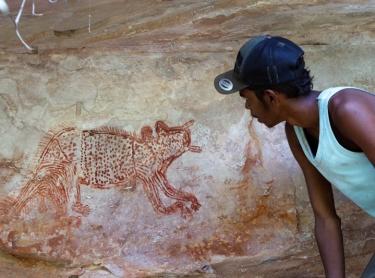 Warddeken IPA - Arnhem Land - survey of rock art in the Kunbambuk estate - Warddeken ranger Gavin Phillips indicates a painting of an animal that could be Tasmanian devil or feral cat