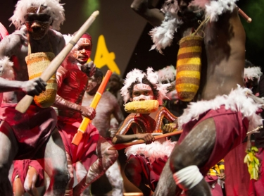 National Indigenous Music Awards (NIMA) 2016, Darwin