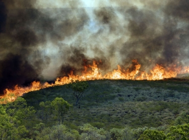 Wild fire breaks out in the Victoria River District of the Northern Territory, Australia - usually started by lightning. meteorology outback burn