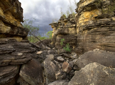 Ledge and rocks looking north across Kabulwarnamyo Valley close to where the creek joins the Liverpool River - Mok clan estate or Mankungdjang (sugarbag dreaming) - Warddeken IPA Arnhem Land plateau indigenous land management Aboriginal culture indigenous rock art images