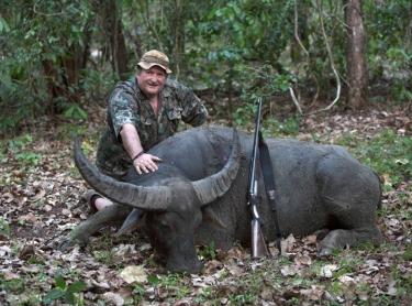 Buffalo are hunted as trophies on Carmor Plains station, a floodplains property next to Kakadu NP