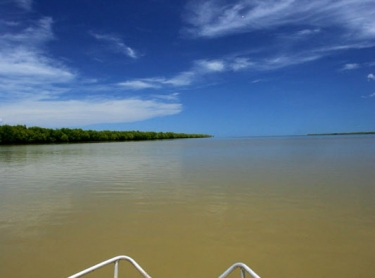 The Daly River - partially flooded in the wet season downstream of Daly River crossing - mouth of the Daly. outback waterway flora north marine sky Photographer: David Hancock. Copyright: SkyScans.