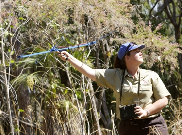 Wildlife ranger Brooke Rankmore uses a radio tracking device to locate animals.