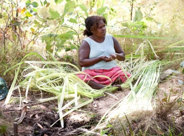 Warddeken IPA - indigenous landowners walk across their country to reaquaint themselves with names and places. Landscape and aerials of the Arnhem Land plateau and stone country. Elizabeth Nabarlambarl preparing pandanus for weaving.