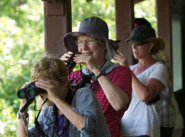 Tourism operated by Venture North to Kakadu, Arnhem Land and Cobourg Peninsula and Port Essington. venture north tourism kakadu arnhem land cobourg peninsula Garig Gunak Barlu national park marine boat indigenous aboriginal - cultural. Kakadu NP - Mamukala billabong - birdwatching