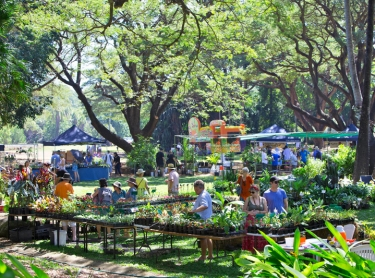 Tropical Garden Fair, George Brown Botanic Gardens, Darwin - an annual event thats atracts thousands of people