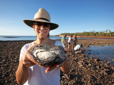 Venture North tourism on Cobourg Peninsula and through Arnhem Land. The tour takes visitors to the Garik Gunak Barlu national park, Oenpelli rock art sites at Karnbalunya and Mamukala in Kakadu NP. Tourists collecting oysters on beds at Port Essington, Cobourg Peninsula